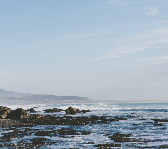 Jenny + Erik // Ano Nuevo Coastal Engagement Shoot
