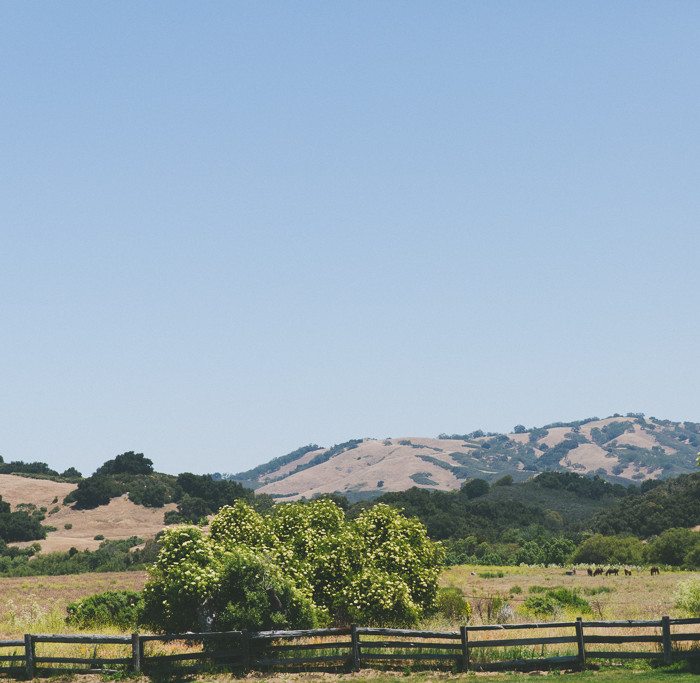 Mike + Kristen Tie the Knot // Santa Lucia Preserve Carmel Valley Wedding