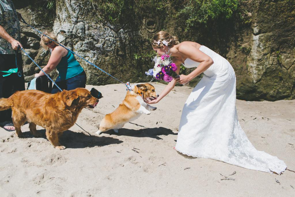 Santa_Cruz_Beach_Wedding_0026