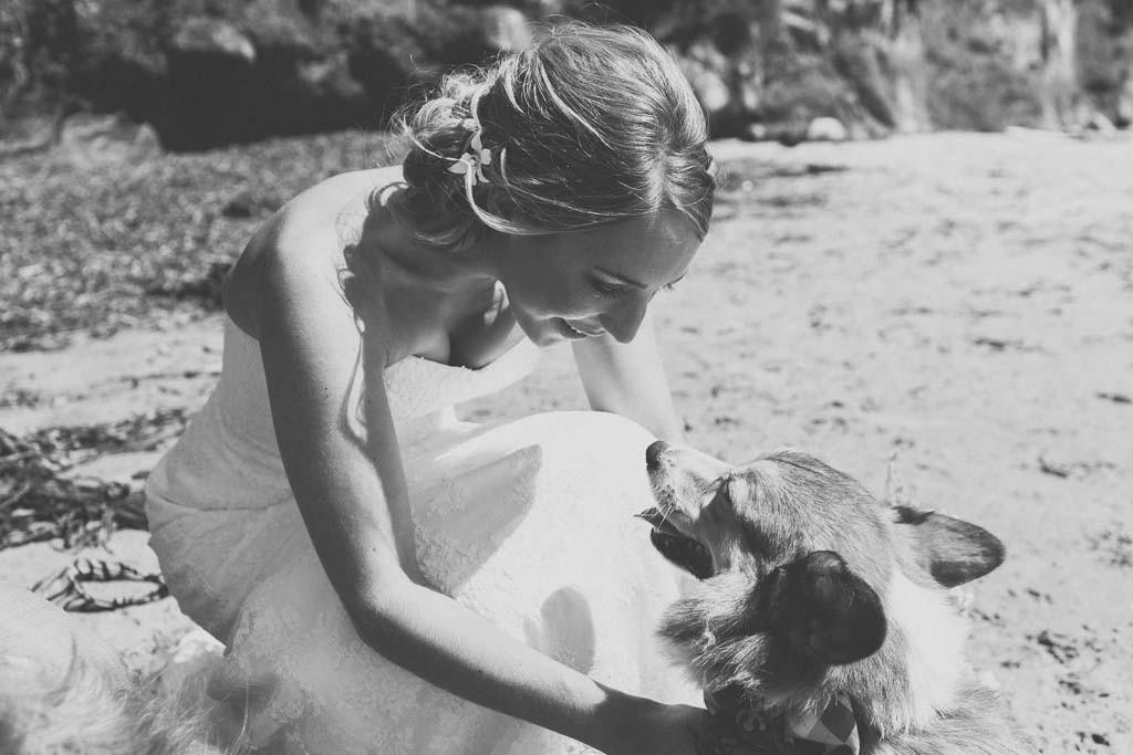 Santa_Cruz_Dream_Inn_Cowells_Wedding_0094