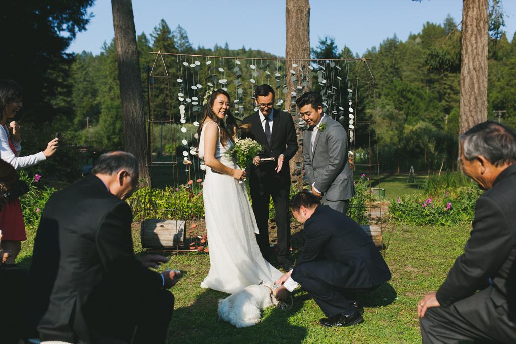 Sabor_Mexicano_Farm_Guerneville_Wedding_0082